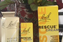 Pay Online in Advance: Bach Flower Remedy Consultation