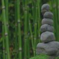 Pay Online in Advance: Spiritual healing (NFSH healer) - £30 (30mins); £50 (1hr)