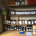 Pay Direct In Person: Western Herbal Medicine